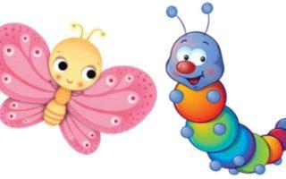 Kleuter: Rupsen & Vlinders